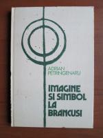 Anticariat: Adrian Petringenaru - Imagine si simbol la Brancusi