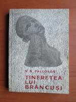 Anticariat: V. G. Paleolog - Tineretea lui Brancusi