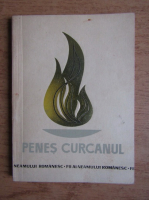 Gavrila Sacadat - Penes Curcanul. Sergentul Constantin Turcanu