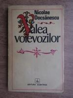 Anticariat: Nicolae Docsanescu - Valea voievozilor