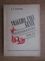 Anticariat: A. E. Brachvogel - Tragedia unui geniu. Friedemann Bach