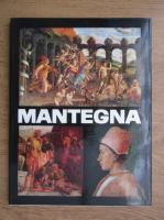 Alexandru Balaci - Mantegna