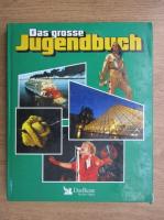 Das grosse Jugendbuch
