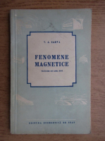 Anticariat: V. A. Zarva - Fenomene magnetice