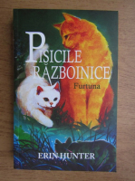 Anticariat: Erin Hunter - Pisicile razboinice. Furtuna (volumul 4)