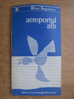 Anticariat: Mihai Negulescu - Aeroportul alb
