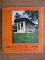 Anticariat: Wilhelm Nyssen - Pamant cantand in imagini. Frescele exterioare ale manastirilor din Moldova