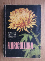 A. Militiu - Floricultura