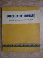 N. Simache - Colectia de covoare a Muzeului de Istorie al judetului Prahova