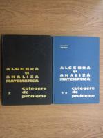Anticariat: Algebra si analiza matematica, culegere de probleme (2 volume)