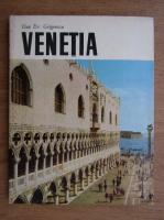 Anticariat: Dan Er. Grigorescu - Venetia