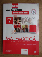 Anton Negrila - Algebra. Geometrie. Clasa a VII-a. Partea I (2012)