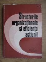 Ion Tudosescu - Structurile organizationale si eficienta actiunii
