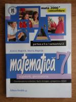 Anton Negrila, Maria Negrila - Matematica. Algebra, geometrie, clasa a VII-a, partea a II-a, semestrul 2