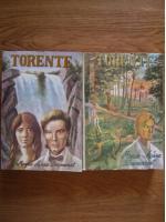 Marie Anne Desmarest - Torente (2 volume)