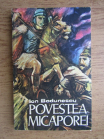 Anticariat: Ion Bodunescu - Povestea Micaporei