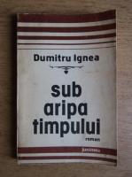 Dumitru Ignea - Sub aripa timpului