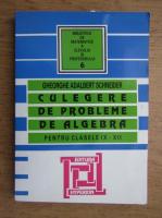 Gheorghe Adalbert Schneider - Culegere de probleme de algebra pentru clasele IX-XII (2007)