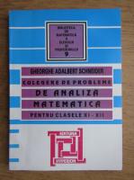 Gheorghe Adalbert Schneider - Culegere de probleme de analiza matematica pentru clasele XI-XII (2007)
