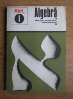 Anticariat: C. Gautier, G. Girard - Algebra. Multimi, statistica, probabilitati (volumul 1)