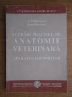 Anticariat: A. Hillebrand - Lucrari practice de anatomie veterinara. Aparatul locomotor