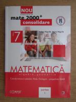 Anticariat: Anton Negrila - Matematica, algebra si geometrie pentru clasa a VII-a (2012)