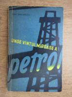 Ioan Grigorescu - Unde vantul miroase a petrol