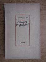 Petru Vintila - Orasul incercuit