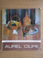 Anticariat: Aurel Ciupe. Expozitie retrospectiva