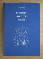 Anticariat: Ion Chiricuta - Cancerul colului uterin