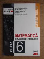 Stefan Smarandache, Petre Simion, Gabriela Raducan - Matematica. Culegere de probleme pentru calsa a VI-a, semestrul 2 (2002)