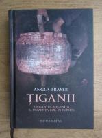 Anticariat: Angus Fraser - Tiganii. Originile, migratia si prezenta lor in Europa