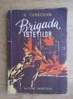 V. Curocichin - Brigada istetilor