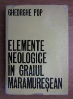 Gheorghe T. Pop - Elemente neologice in graiul Maramuresean