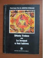 Anticariat: Dumitru Staniloae - Sfanta Treime sau la inceput a fost iubirea