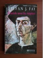Anticariat: Stefan J. Fay - Caietele unui fiu risipitor