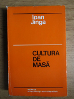 Anticariat: Ioan Jinga - Cultura de masa