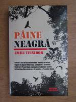 Emili Teixidor - Paine neagra