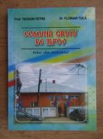 Teodor Petre - Comuna Gruiu de Ilfov