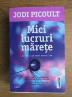 Anticariat: Jodi Picoult - Mici lucruri marete