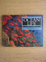 Steve Parker - Ocean life
