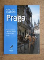 Anticariat: Ghid de buzunar Praga