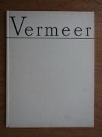 Vasile Nicolescu - Vermeer