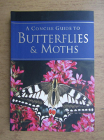 Elizabeth Balmer - A concise guide to butterflies and maths
