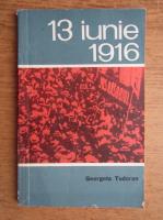 Anticariat: Georgeta Tudoran - 13 iunie 1916