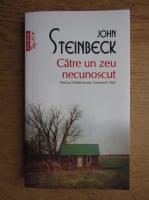 John Steinbeck - Catre un zeu necunoscut