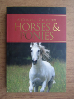 Corinne Clark - A concise guide to horses and ponies