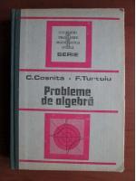 Anticariat: C. Cosnita - Probleme de algebra
