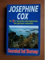 Josephine Cox - Secretul lui Barney