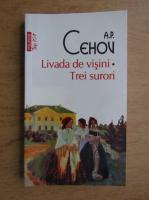 Anticariat: A. P. Cehov - Livada de visini. Trei surori (Top 10+)